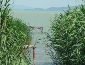 BF27 BAL OLDAL -  közvetlen 4-5 személyes vízparti  nyaraló Balatonfenyvesen Mészáros Lázár utcában