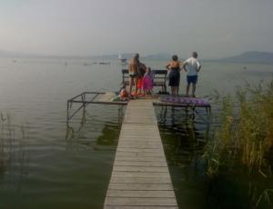 BF10_7 vízparti balatonfenyvesi nyaraló
