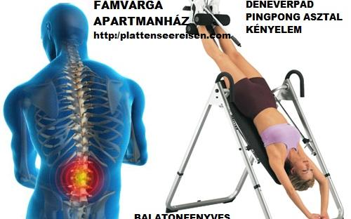 gerinc-problemak-izuleti-fajdalmak-ellen-balatonfenvesen-.jpg