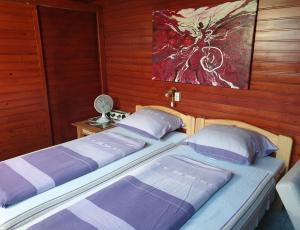 BF8 Vízparti 2+1 személyes olcsó  apartman  Aranyosi utcában Balatonfenyvesen