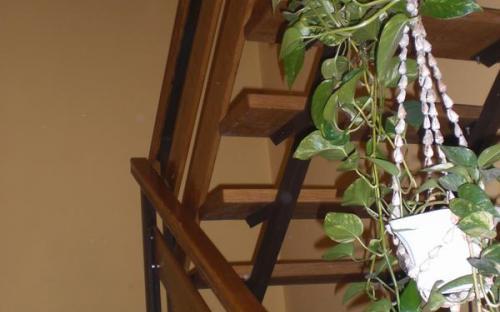 Lépcsőrész (1).JPG